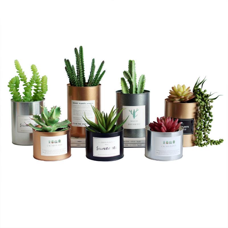 [해외]Tinplate 금속 꽃 냄비 즙이 많은 창조적 인 회화 철 저장 용기 금속 공예 홈 탁상 장식/Tinplate Metal Flower Pot Succulent Creative Painting Iron Storage Container Metal Crafts Ho