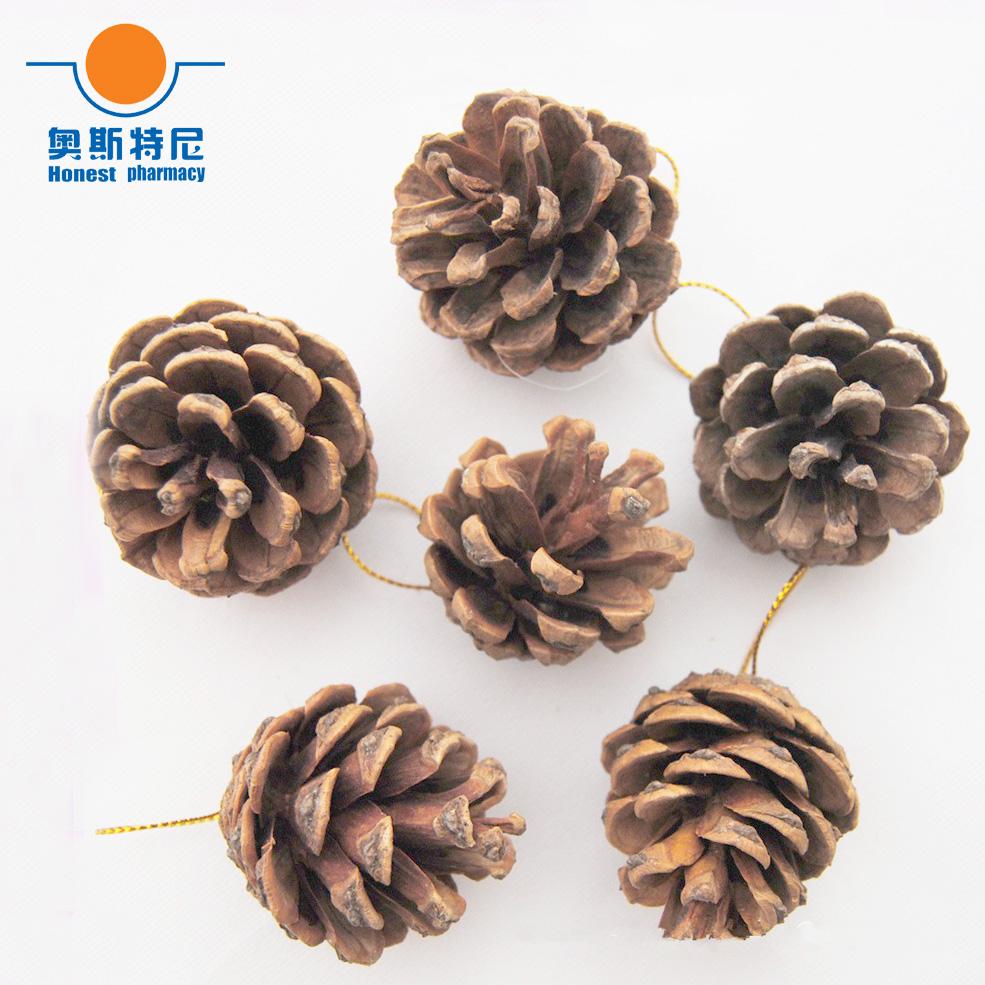 [해외]40pcs 2-3cm naturally pine cones,golden sting hanging for Christmas decoration/40pcs 2-3cm naturally pine cones,golden sting hanging for Christmas