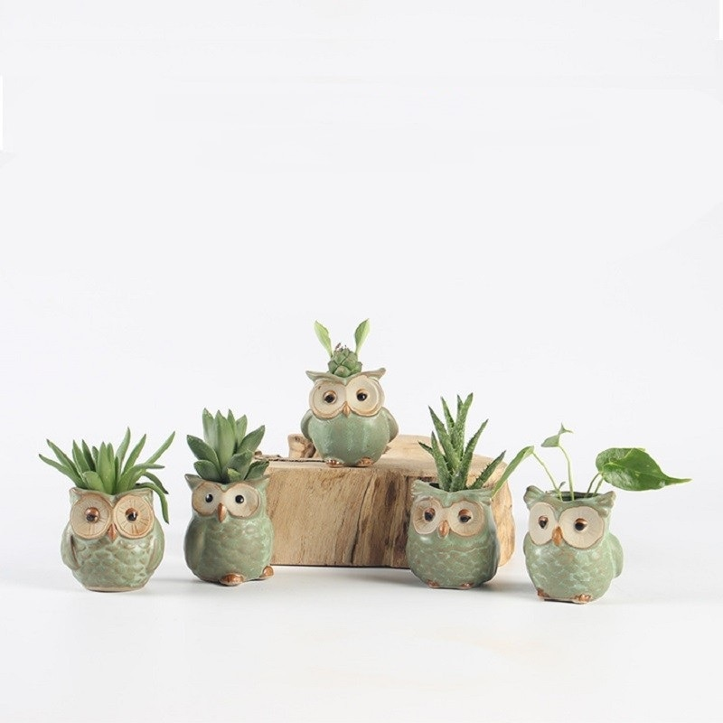 [해외]5Pcs/Set Ceramic Owl Shape Flowerpots Creative Cartoon Mini Succulents Home Garden Office Desktop Decoration Plant Flower Pots/5Pcs/Set Ceramic Ow