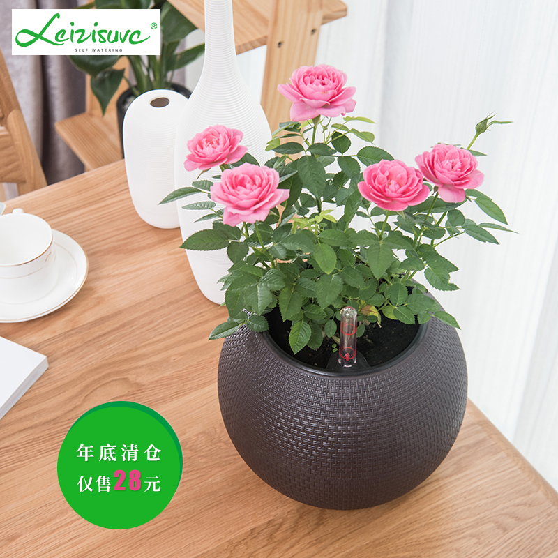 [해외]European automatic water absorption lazy flower pot small spherical creative vine-like simple flower pot/European automatic water absorption lazy