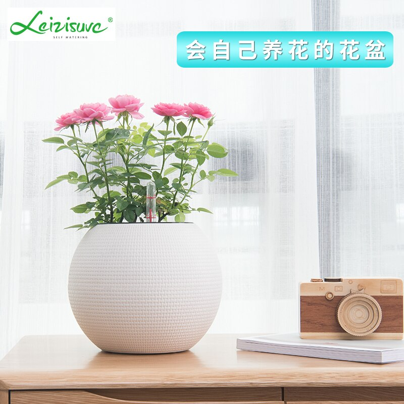 [해외]Creative braided automatic water-absorbing flowerpot indoor green-apple round spherical flowerpot plastic/Creative braided automatic water-absorbi