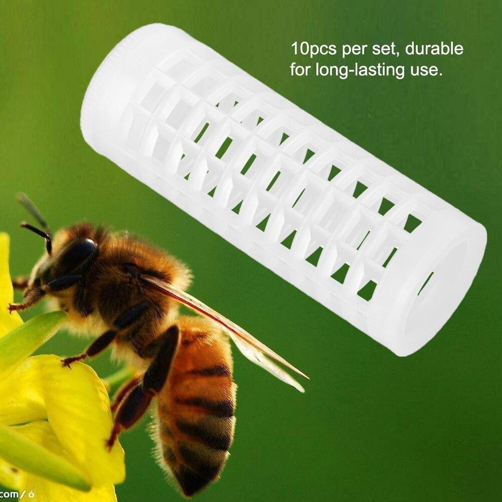 10 pcs 양봉 양육 컵 키트 여왕벌 케이지 꿀벌 양봉 장비 유지
